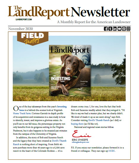 Land Report newsletter November 2020