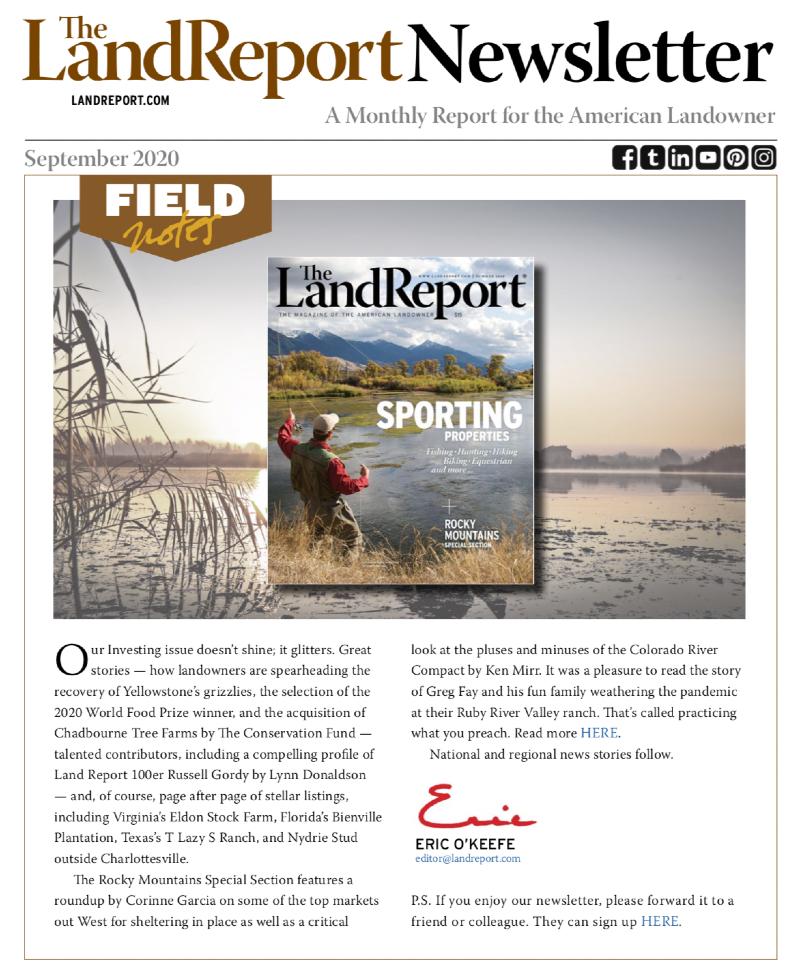 Land Report September 2020 newsletter