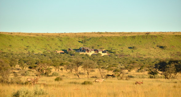 South Africa Hunting Preserve
