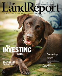 Land Report Fall 2020 cover